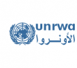 UNRWA is looking for a Loan Officer